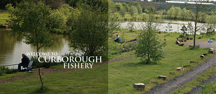 Welcome to Curborough Fishery